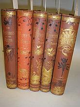 VICTORIAN CLOTH BINDINGS : Figuier, Louis & Adams,