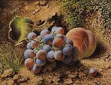 William Henry Hunt [1790-1864]- Still life of grap