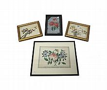 A pair of Chinese rice paper paintings of birds in branches, 14cm. by 18.5cm., framed and glazed; and two painted with flowers, largest 24cm. by 17cm., each framed and glazed.