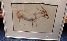 John Rattenbury Skeaping (1901-1980), Deer, pencil and red chalk, signed and dated '31, 26cm x 38cm. DDS