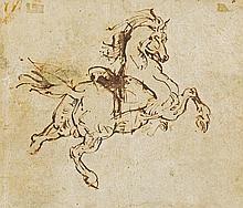 Étude de cheval cabré