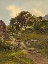 Bergpfad bei Murg