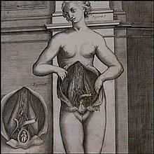 [Anatomy] Berrettini Da Cortona, Anatomical Plates 1741