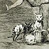Goya, Ensayos