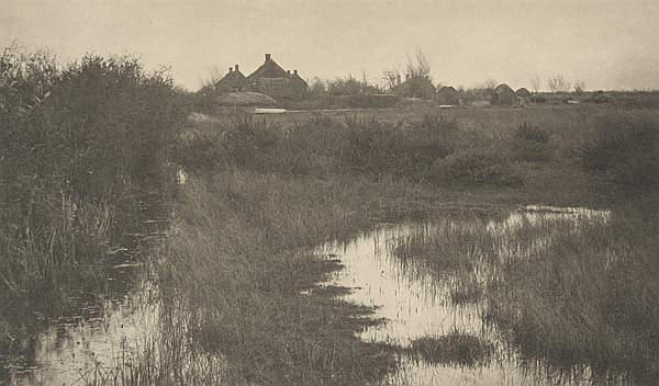 Peter Henry Emerson (1856-1936). The Fringe of the