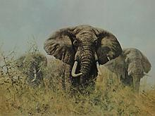 David Shepard (1931-) framed print, three happy jumbos. FATG blind stamp bo