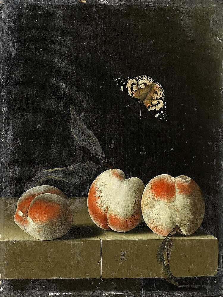 Adriaen Coorte (active Middleburg, circa 1683-circa 1707) Three peaches on a stone ledge with a Red Admiral butterfly