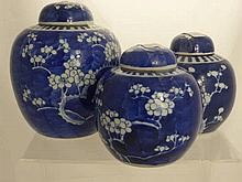 Two Chinese Blue and White Ginger Jars, depicting