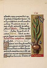 ILLUMINATED MANUSCRIPTS -- LIVRE D'HEURES DE LA REINE ANNE DE BRETAGNE, Le.