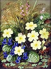 Albert Durer Lucas (1828-1918) - Oil painting - Still life of wild flowers, canvas 8ins x 5.5ins, si