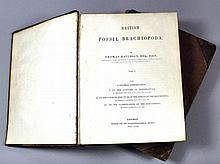 British Fossil Brachiopoda by Thomas Davidson,
