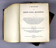 A Monograph of the British Fossil Brachiopoda by