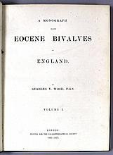 A Monograph of the Eocene Bivalves of England, by