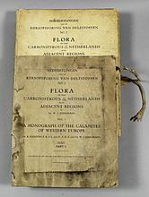 Flora of the Carboniferous of the Netherlands,