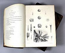 Monograph on the British Fossil Echinodermata of