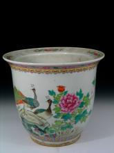 Chinese Famille Rose Porcelain Jardiniere with Pheonix