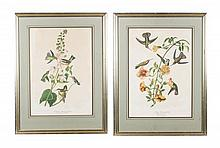 Pair of Julius Bien Prints After Audubon