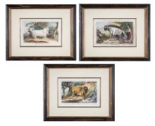 Set of Three Animal Etchings by Charles Catton   *