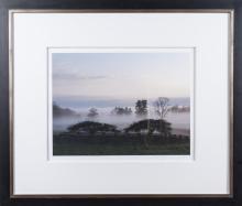 Martha Stewart, Photograph of Connecticut