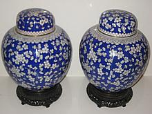 Pair of Chinese Cloisonne Blue and White Covered Jars
