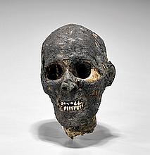 MUMMIFIED HUMAN HEAD