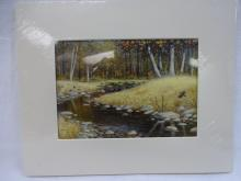 Knauss Landscape With Stream-matted