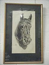 Framed horse picture signed Refna 87