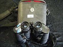 Pathescope cased 10 x 50 binoculars