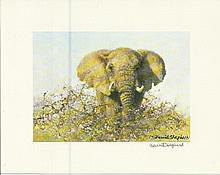 David Shepherd signed elephant illustration. Good condition