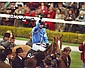 Peter Scudamore signed 12 x 8 colour horse racing photo