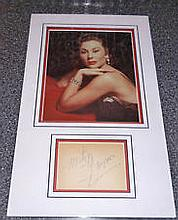 Gaynor Janet A 20cm x 25cm, 10 x 8 inches photo mounted together with an al