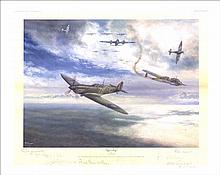 Tiger's Prey by David Pritchard. Flt Lt John
