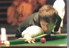 Judd Trump autographed high quality 16x12 inch sno