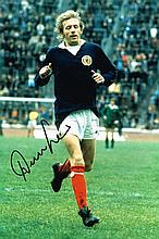 Denis Law Scotland Rare Signed 12 X 8 photo. Good