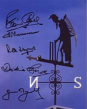 CRICKET MULTI SIGNED: 8x10 inch photo of the