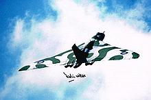Martin Withers Vulcan Bomber Signed 12 X 8 photo.