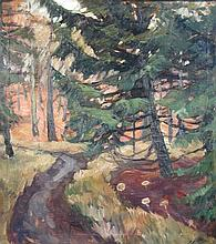 French School (20th Century)    - Woodland landscape with fir trees - oil on canvas