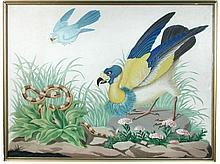 A pair of hand coloured botanical prints of exotic birds and a snake,