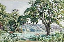 Albert George Petherbridge (British, 1882-1934) Ponies in the New Forest signed lower right