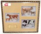 Complete set DeLaval tin cows and calves in nice frame