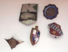(5) Radiator badges