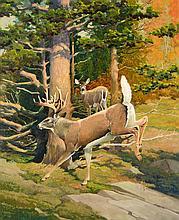 Francis Lee Jaques (1887-1969)