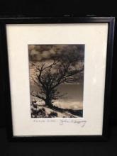 John Worthington Gregory Fine Art Photo