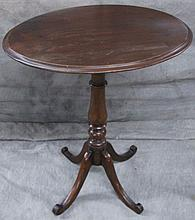 TILT TOP STAND- MAHOGANY.  With oval top, turned pedestal upon four saber legs.