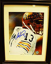 DAN MARINO AUTOGRAPHED PHOTO.  In frame.  With certificate of authenticity.