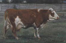 Stere Grant. Cow In Field, oil on board