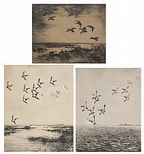 Roland Clark. Three framed waterfowl etchings