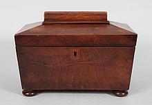 Regency sarcophagus-form tea caddy
