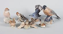 Seven assorted Continental porcelain birds
