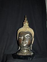 Tête de Bouddha à l' expression sereine coiffée des fines bouclettes surmontée de la protubérance crânienne ushniha terminé par un important rasmi flammé.